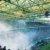 Ultras – Fluch oder Segen der Fußballkultur?